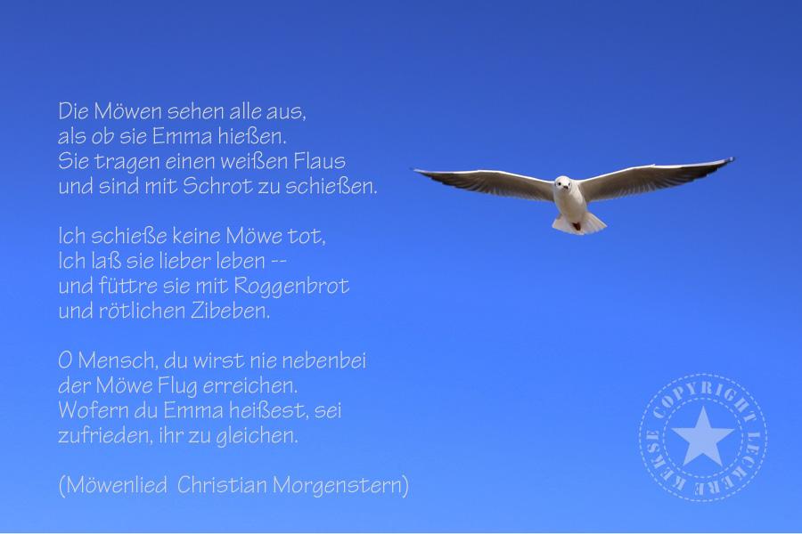 Das Möwenlied von Christian Morgenstern