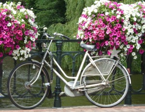 Amsterdam Fahrrad leckereKekse fotografieren