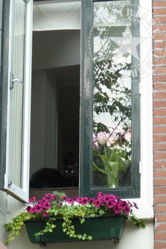 10 Tipps für Amsterdam