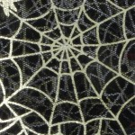 spinnennetz die Falle Melanie Raabe leckerekekse-blog