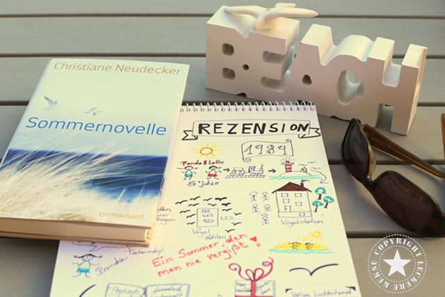 Sommernovelle-Rezension mit Sketchnote