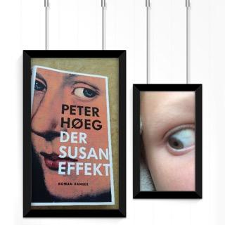 Susan Effekt, Auge, Cover, Peter Hoeg