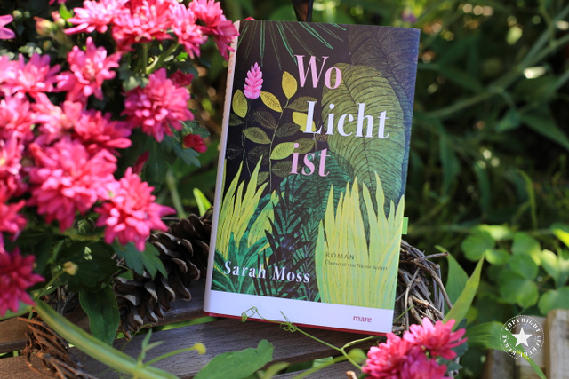 Sarah Moss: Wo Licht ist