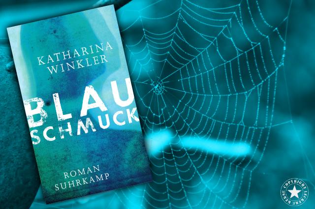 Blauschmuck - Die Spinne