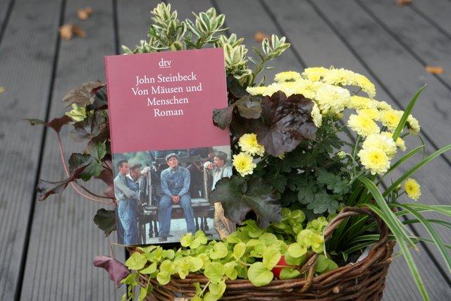Jahr des Taschenbuchs, #JDTB16, September, John Steinbeck. Von Menschen und Mäusen