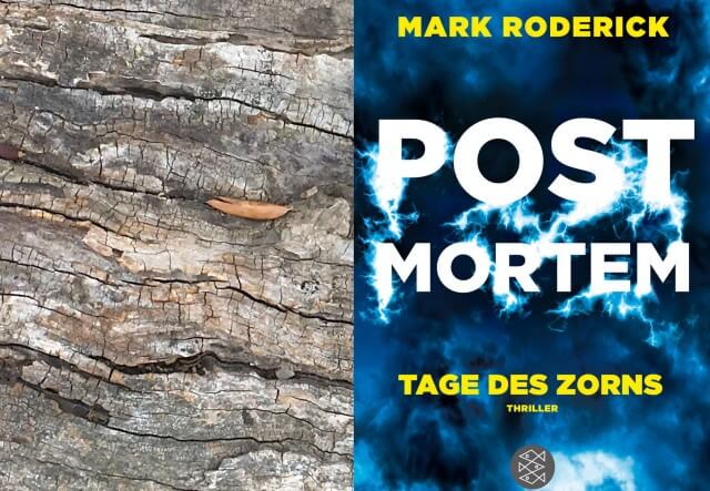 Mark Roderick: Post Mortem Tage des Zorns