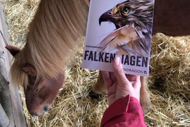D.B. Blettenberg: Falken jagen, Kriminalroman, Pendragon Verlag