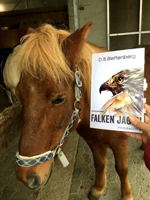 D.B. Blettenberg: Falken jagen, Blogtour des Pendragon Verlags