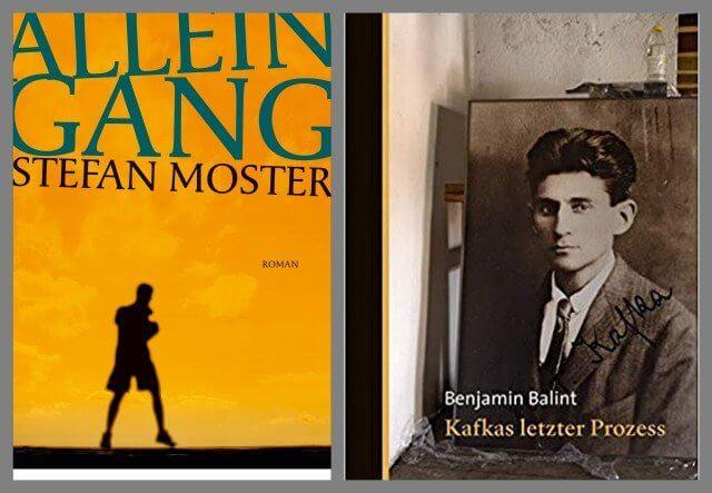 Stefan Moster: Alleingang, Kafkas letzter Prozess