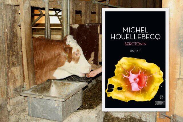 Rezension: Serotonin von Michel Houellebecq, Landwirtschaft, Kühe