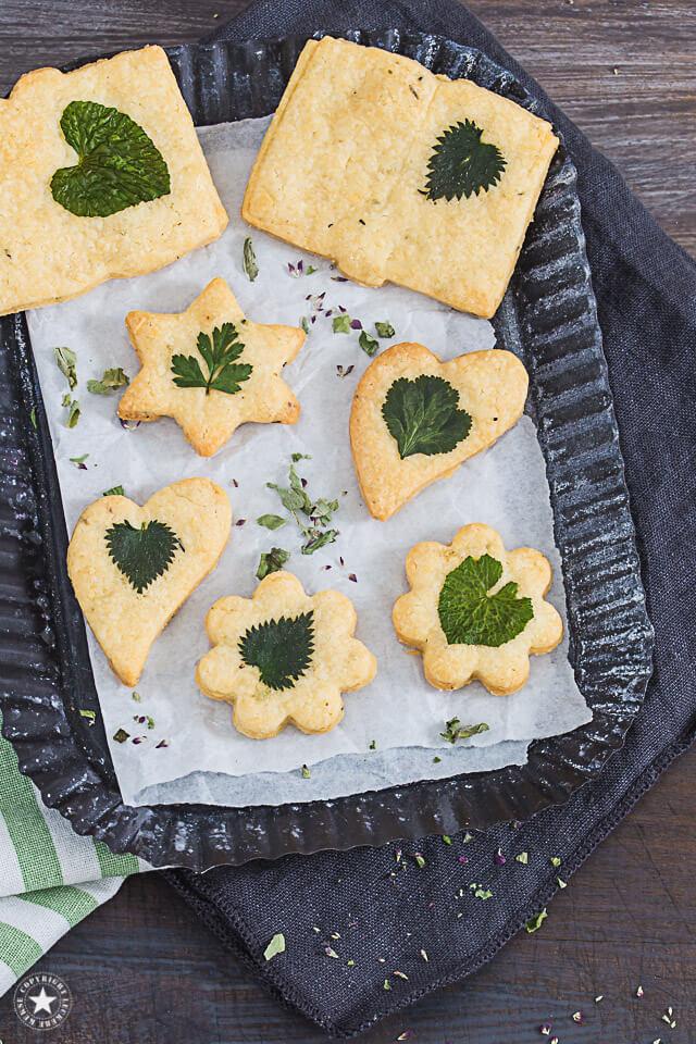 Käse-Kräuter-Kekse