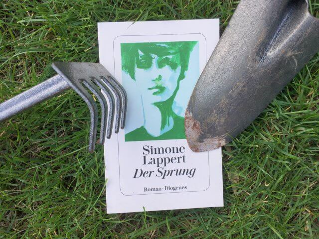 Simone Lappert: Der Sprung, Rezension, Buchbesprechung