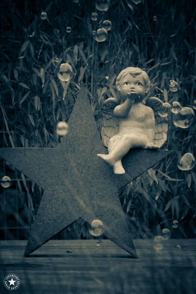 Engel mit Pusteblumen
