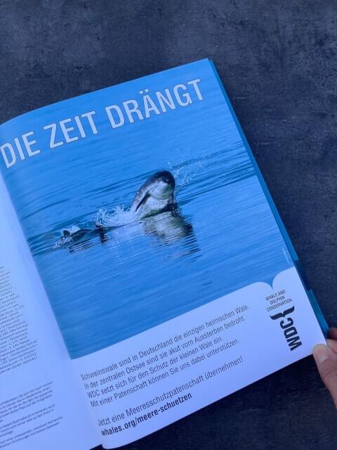 Schweinswal und Verweis auf Whale and Dolphin Conservation